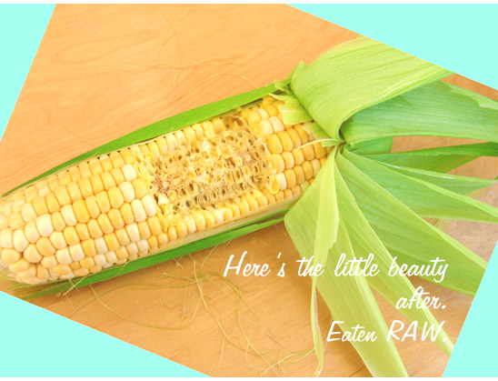 EATEN right off the cob. Fresh raw organic corn on the cob - I slay the little beast, shedding it's green garb revealing crisp sweet kernels of yummy goodness...