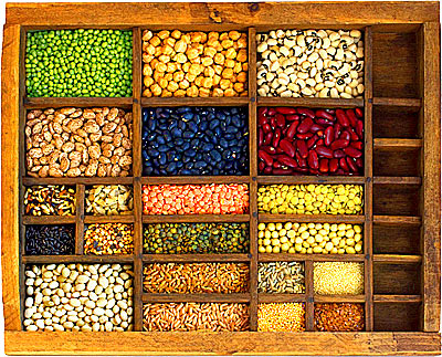 Grains and Seeds - Includes Nuts, Beans, Legumes